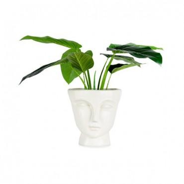 Tall Joli-Face Planter Garden Pot Flower Plant Holder Ivory Cream 39x30cm