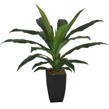 POTTED FAUX JANET CRAIG DRACAENA PLANT