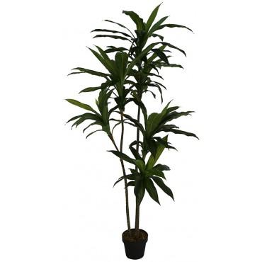 Potted Faux Dracanea Lemon Lime Plant Tree Artificial Fake Floral 45x165cm