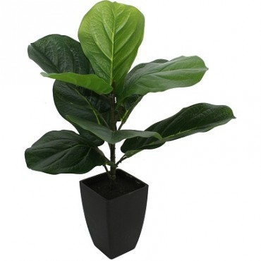 POTTED FAUX BABY FIDDLE LEAF PLANT