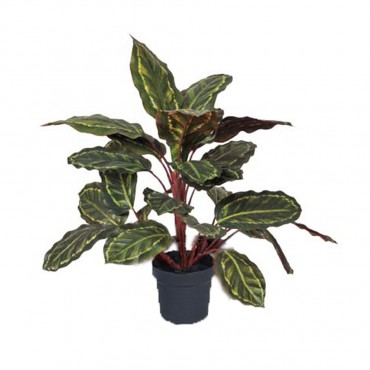 Potted Faux Calathea Plant Plant Tree Artificial Fake Floral Fabric 60%,Plastic:25%, Iron5%,Cement10% Green 30x48cm