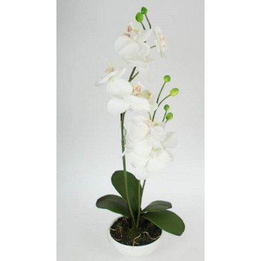 Faux Orchid In Ceramic Pot Plant Fake Floral Artificial Green 30x44cm