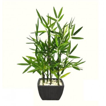 Faux Bamboo Plant In Terracotta Pot Tree Fake Floral Artificial Green 25x46cm