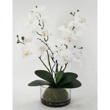 Faux Orchid In Glass Pot Plant Fake Floral Artificial White 30x48cm