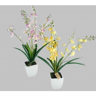 bulk 6 Faux Vanda Orchid In Pot 2 Assort Plant Fake Floral Artificial 30x56cm